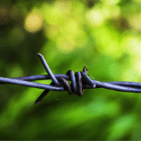 Wire-Fence